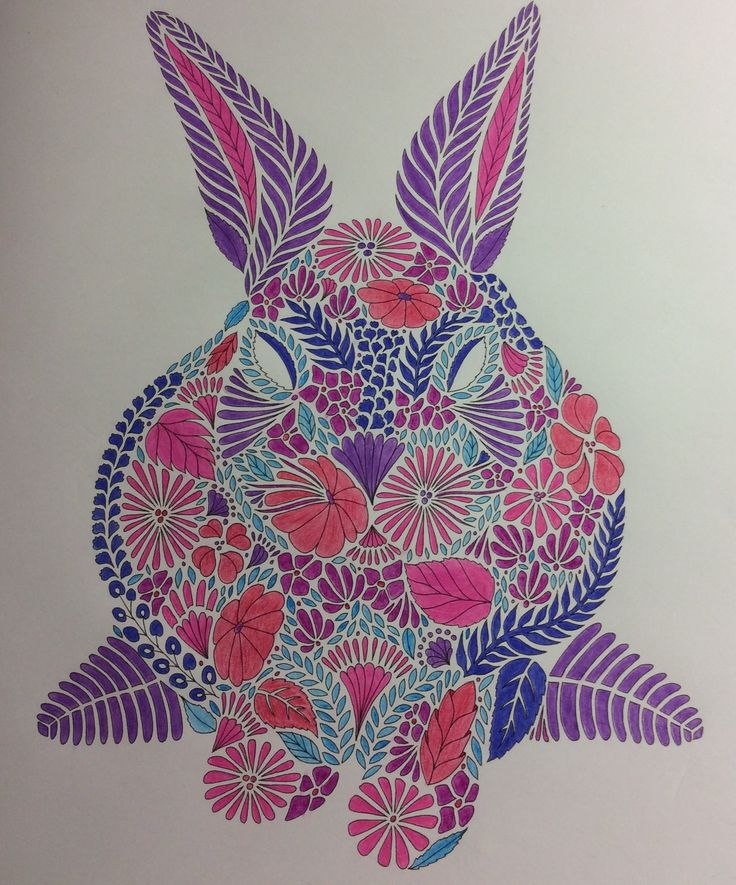 Animal Kingdom Book Rabbit Adult ColoringColoring