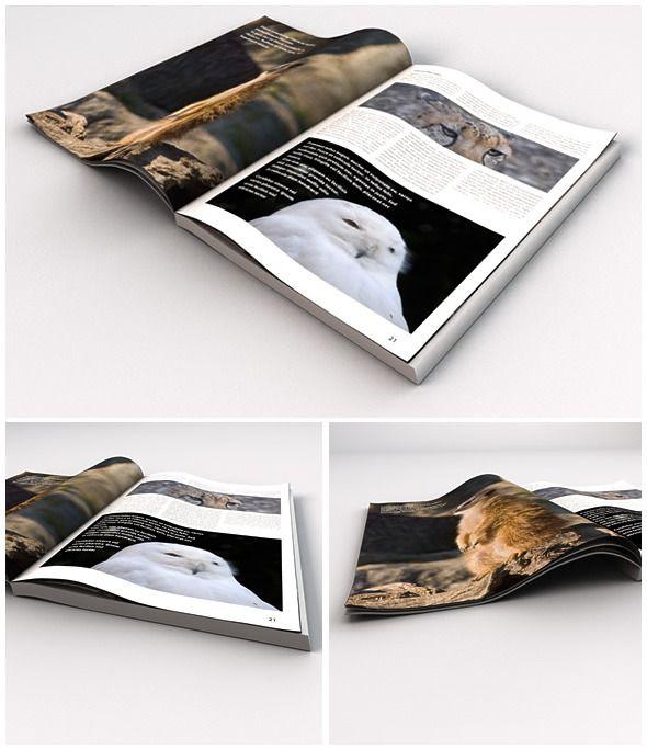 Opened Magazine / Book