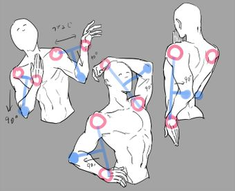 以前友人に、肩と手をつないだ対角線から90度引くとそこに肘がくるっていう話をきいてなるほどすぎて感動したんですが、自分のモデル確認したら明らかに二の腕のほうが短かった…だからバランス悪いんですね
