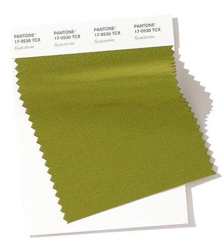 Image result for FASHION PANTONE guacamole