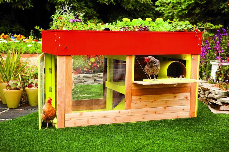 Garden Roof Coop