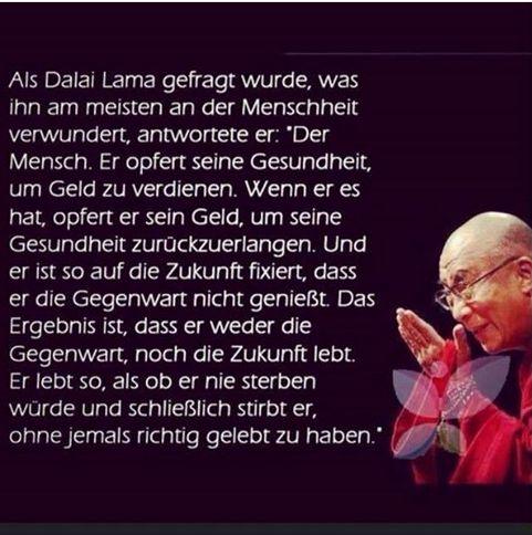 dalai lama zitate gute zitate gedichte spruche und zitate