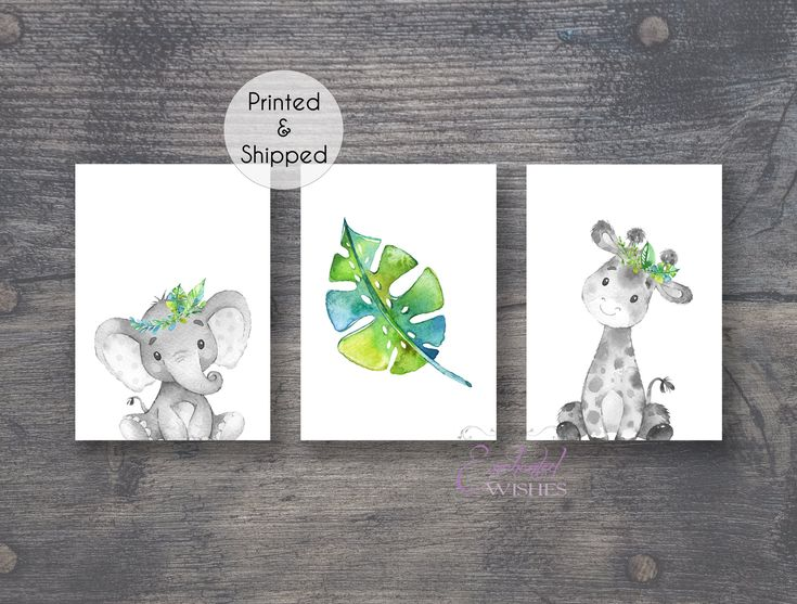 Jungle Safari Animal Prints Set Of 3 Tropical Nursery Wall Art