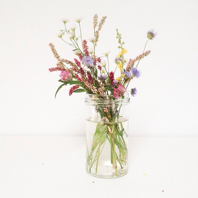 Estas flores silvestres con todo nuestro cariño son para @clarabmartin, un abrazo fuerte