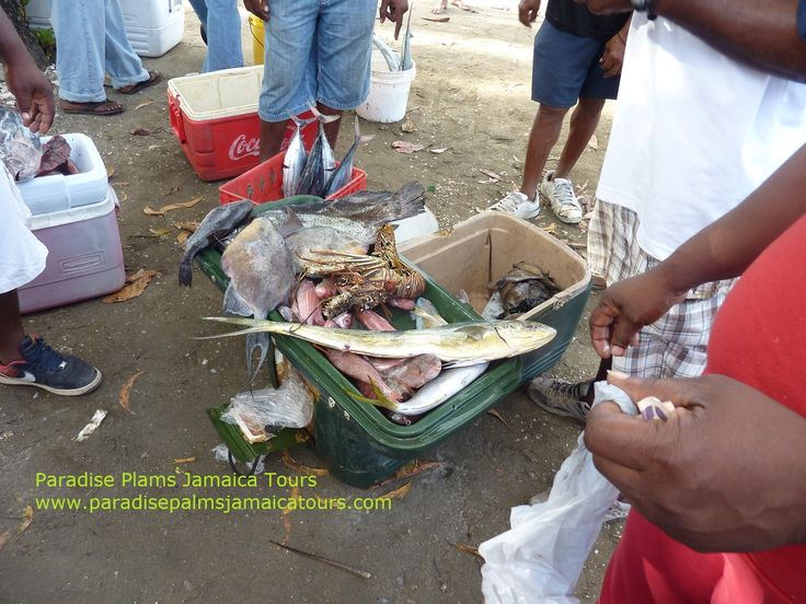 80 best images about montego bay jamaica cruise port for Jamaica fish market