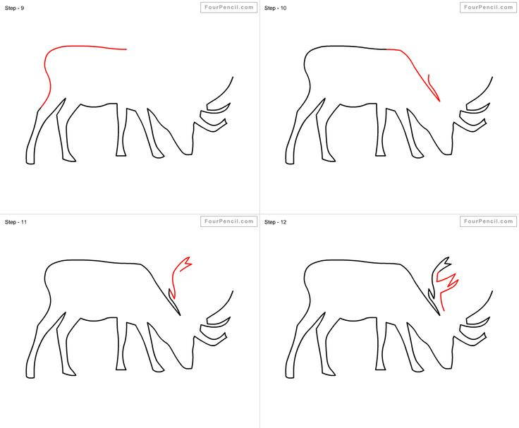 how to draw a buck deer step by step