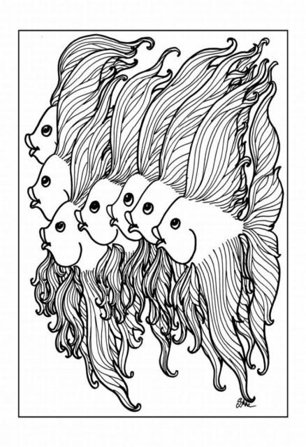 angel fish coloring colouring printable adult advanced detailed free coloring pages
