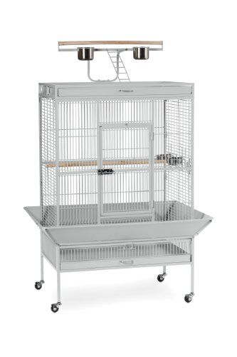 Special Offers - Prevue Pet Products Wrought Iron Select Bird Cage Pewter 3154W - In stock & Free Shipping. You can save more money! Check It (April 17 2016 at 11:01PM) >> http://dogcollarusa.net/prevue-pet-products-wrought-iron-select-bird-cage-pewter-3154w/
