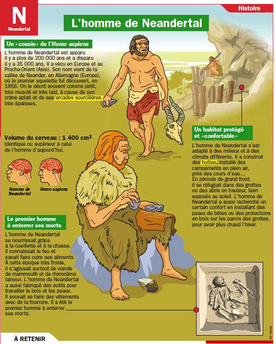 Fiche exposés : L'homme de Neandertal                                                                                                                                                                                 Plus