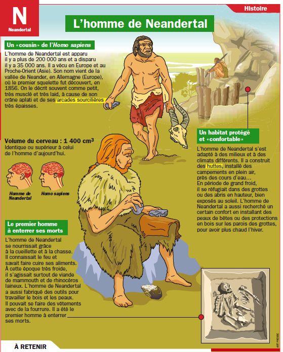 Fiche exposés : L'homme de Neandertal