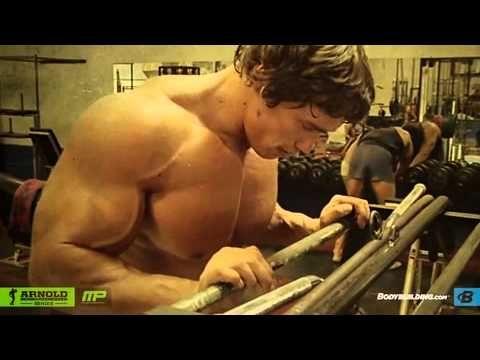 Bodybuilding com   Arnold Schwarzenegger Blueprint Trainer  Mass Training Overview