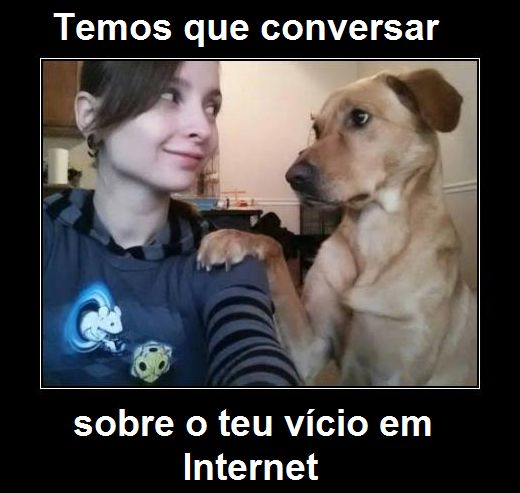 Cão amigo