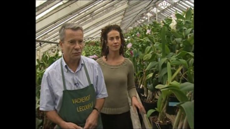 """Emission """"Côté Jardin"""" - France 3 - 16/12/2006 - Orchidées Vacherot Leco..."""
