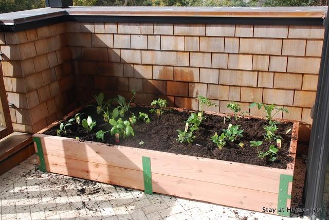 finished diy patio garden