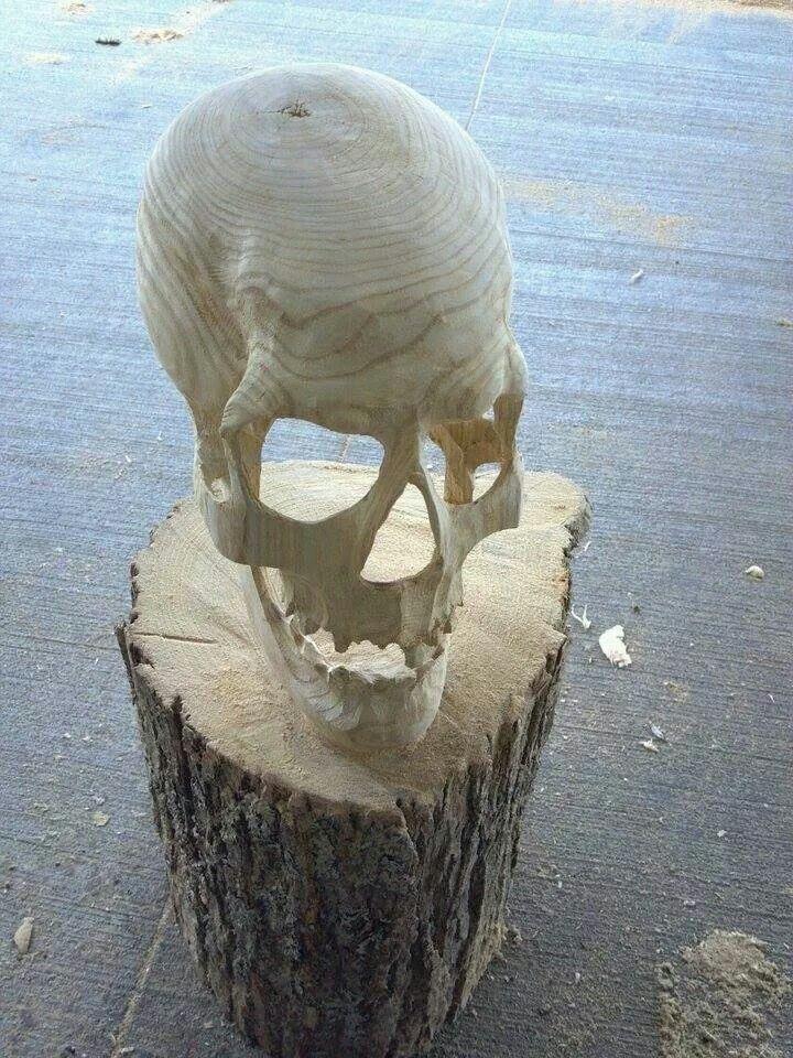 Skull in wood