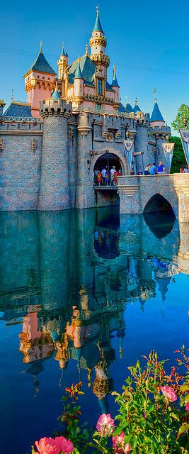 Disneyland Park, Disneyland Resort, Anaheim, CA  i did get to go when i was 8 and would love to go again!!