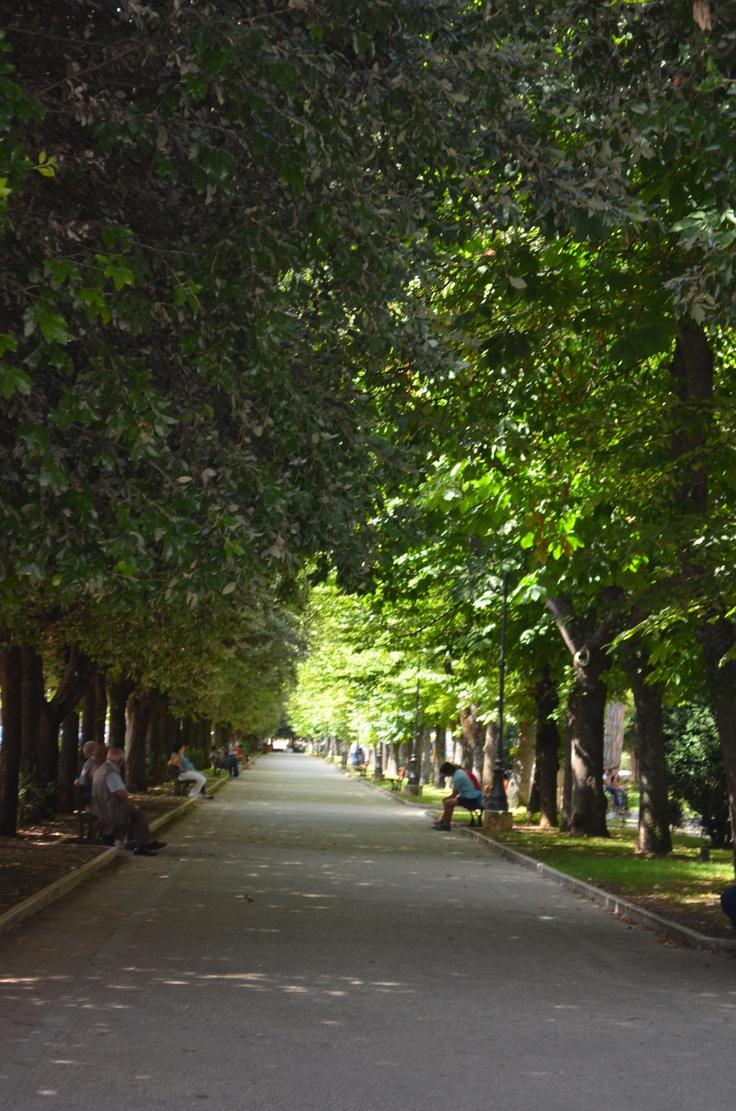 sulmona, Italy I love walking this park
