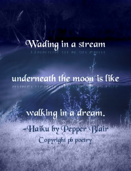 Wading--Picture haiku by Pepper Blair http://www.love-pb-poetry.com/haiku-poetry.html