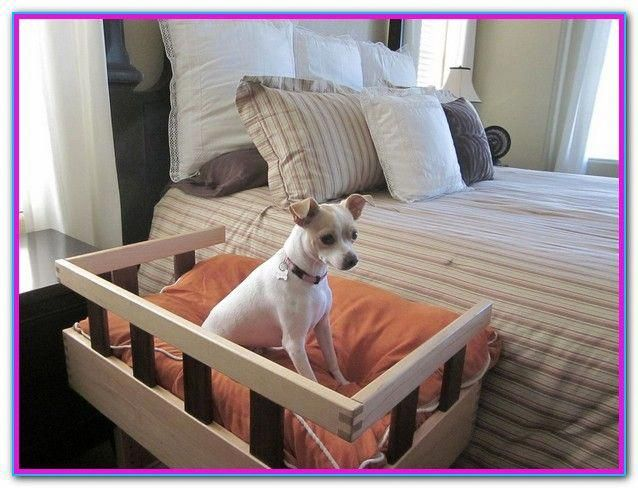 Dog Beds Sold By Amazon Dog Bed Off The Floor Dogsofinstaworld