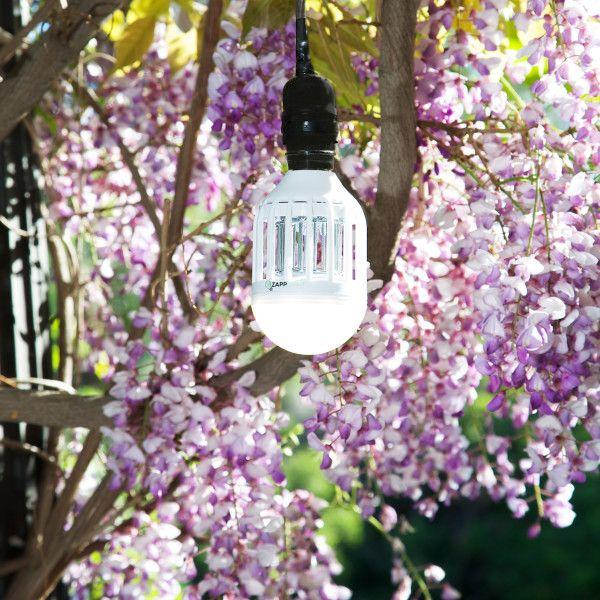 L'ampoule anti-moustiques. ZappLight est la première ampoule anti-moustiques. Elle vous permet d'éclairer vos pièces et terrasses et lutte en même temps contre les insectes nuisibles. Sa faible consommation (10w) et l'absence de produits chimiques font d'elle une lampe écologique.