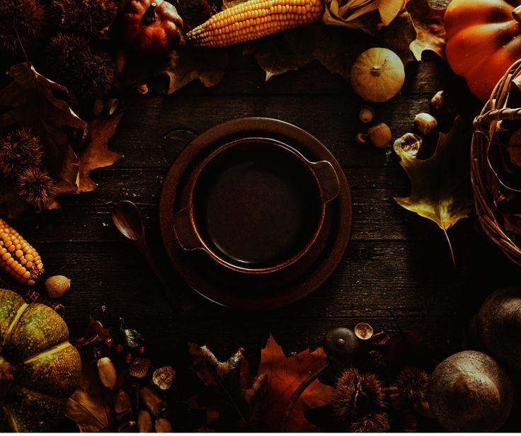 Five Things Content Marketers Should Be Thankful for - T3 Custom