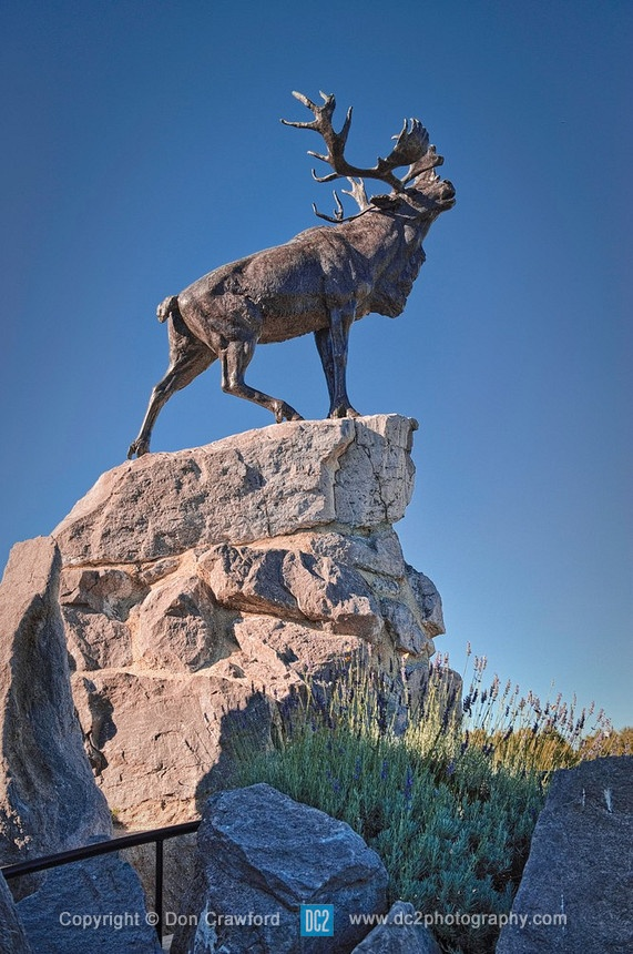 Newfoundland Regiment Memorial. The Beaumont-Hamel Newfoundland Memorial is a memorial site dedicated to the commemoration of Dominion of Newfoundland forces members who were killed during World War.