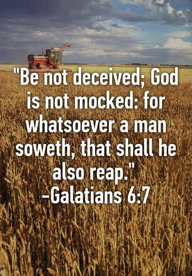 """""Be not deceived; God is not mocked: for whatsoever a man soweth, that shall he also reap.""  -Galatians 6:7"""
