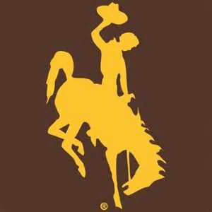 Obraz znaleziony dla: wyoming cowboy silhouette