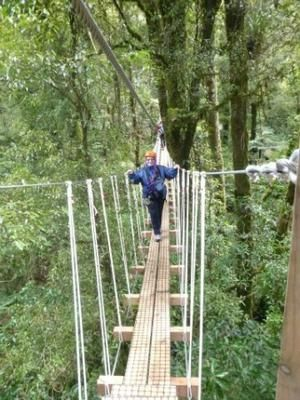 The best zipline eco tour: If you haven't been out with Rotorua Canopy Tours yet, plan to! It's a must. Seven zip lines and two swing bridges way up in the canopy of virgin forest.