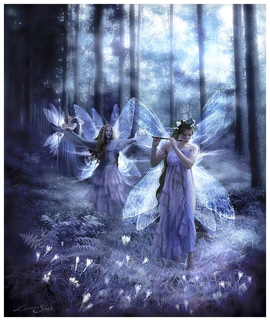 Faerie Wings and Mountain Mist