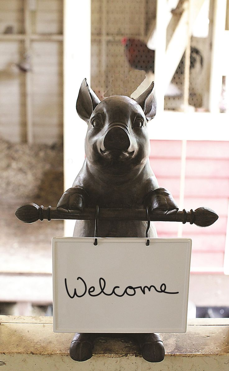 Resin Pig Figurine With Message Board Products