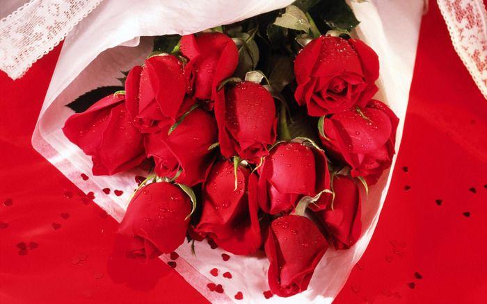Denne smukke roser !!. Diskussion om LiveInternet - Russisk service Online Diaries