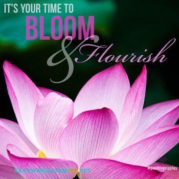 http://www.transformationhq.net/positiveripples8/ Grab Your Free Abundance Planner