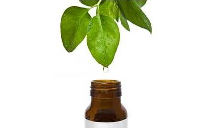 "20 Great Ways to Use Tea Tree Oil!  (green, sustainable & healthy.) Kathi Keville of HowStuffWorks.com says this oil is often called a ""medicine cabinet in a bottle"" and is ""effective against bacteria, fungi, and viruses and stimulates the immune system."" Here are 20 ways to use this magical formula! *Do NOT ingest it orally. [For Health]: 1. Use a dab to treat acne. 2. An anti-fungal for treating Athlete's Foot, eczema, various yeast infections, etc. 3. An antiseptic to be used on cuts and b...: Yeast Infection, Skin Care, Tea Tree Oil, Athlete'S Foot, Teas, Essentialoils, Essential Oils, Trees, Natural"
