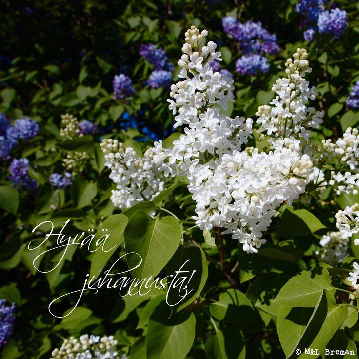 #juhannus #juhannusaatto #juhannuspäivä #kesä #valokuva #valokuvaus