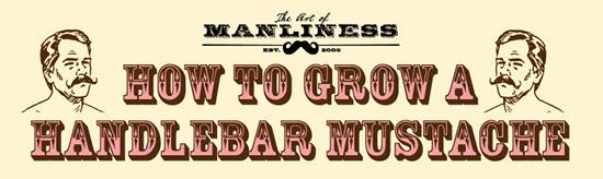 A guide for a handlebar mustache. Because this needs to happen, at least once.