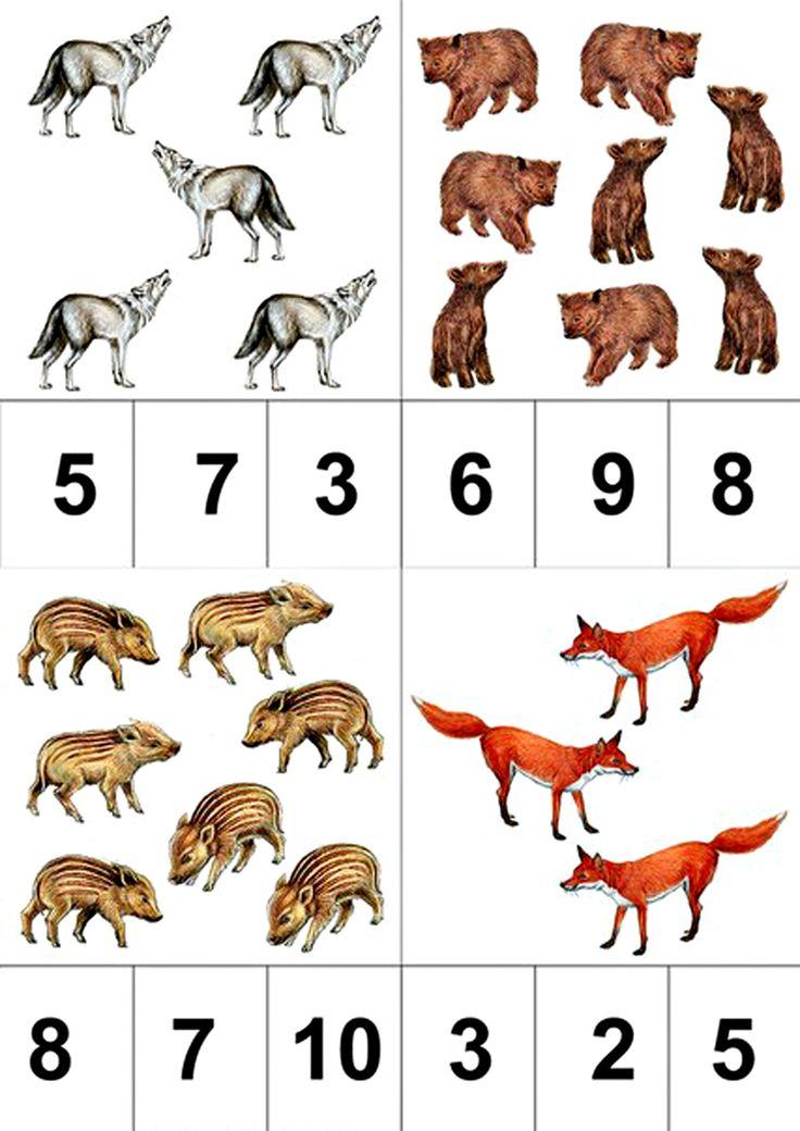 Разнообразные математические задания. Дикие животные