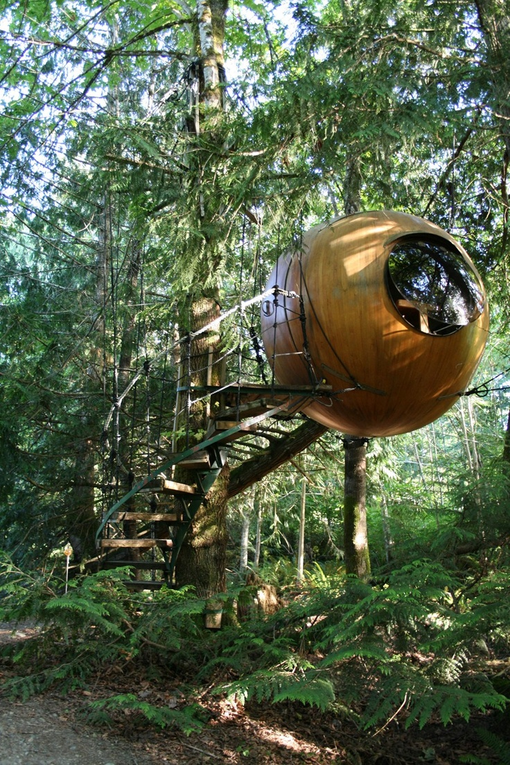 """The Free Spirit Spheres near Qualicum on Vancouver Island are meant to be """"treehouses for adults."""" """"Free Spirit Spheres"""" #explorebc"""