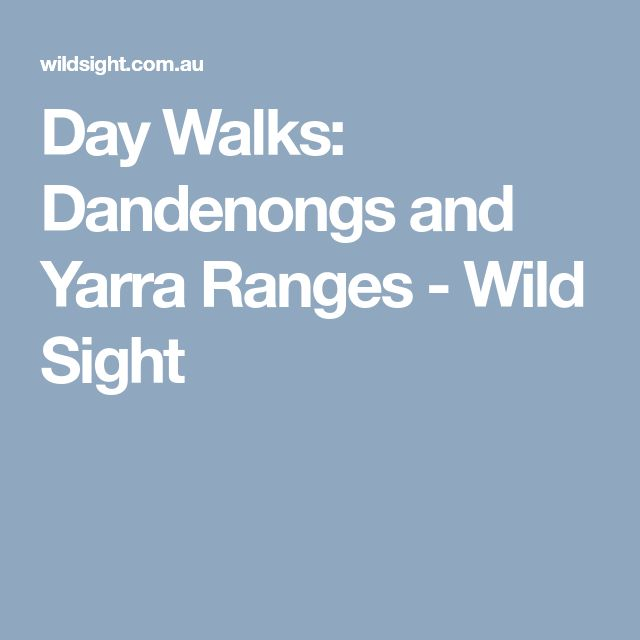 Day Walks: Dandenongs and Yarra Ranges - Wild Sight