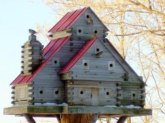 Do It Yourself Home Design: How To Build A Bird House