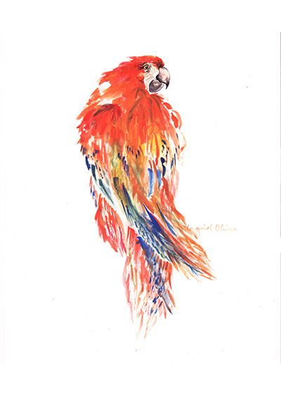 www.ingridoline.com   Parrot print, made by Ingrid Oline.   Elephant, art, love, elefant, animal, painting, gouach, giraffe, sketch, print, etsy, pro, talent, realistic, cartoon, frame, bolia, brown, yellow, pink, greek, marvel, stone, sculpture, parrot, bird, red