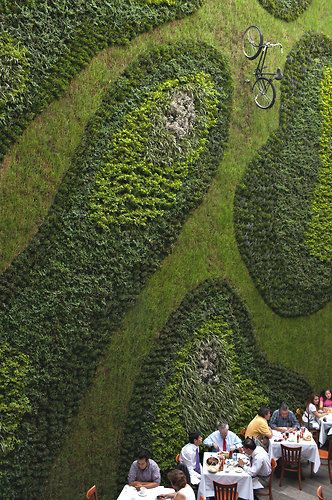 vertical garden at the Restaurant Padrinos in Mexico City to fight a blanket of pollution via NYTimes