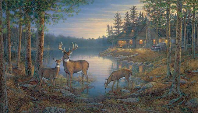 Interior Place Large Quiet Places Wall Mural, 210.59