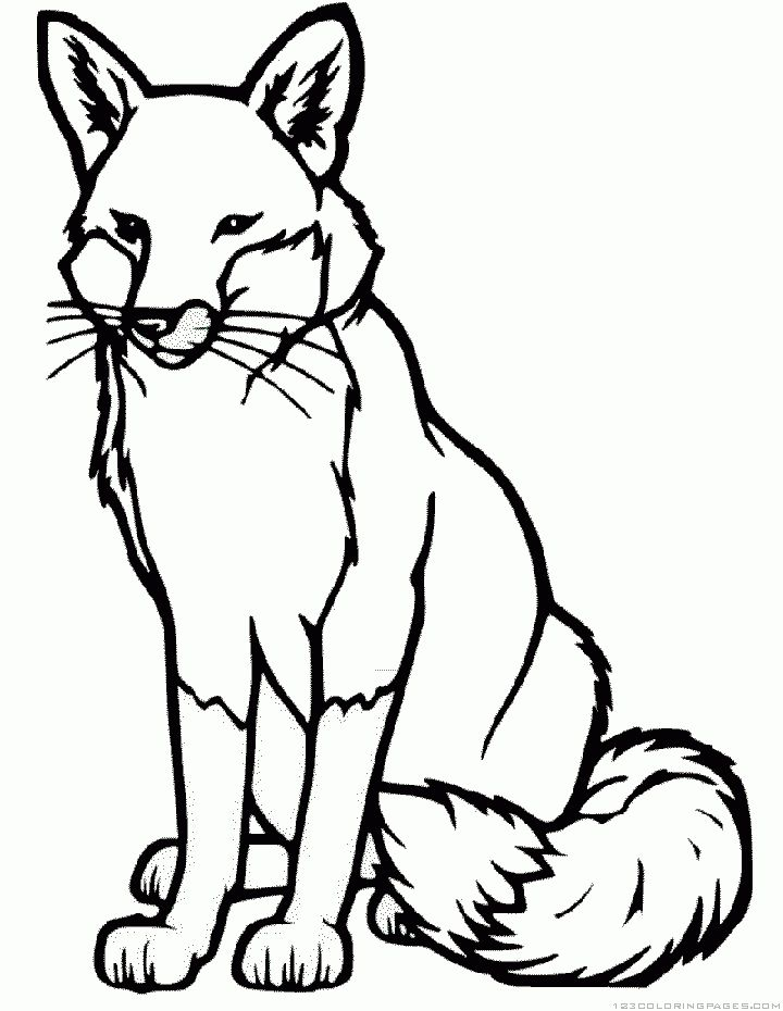 The 25 Best Fox Coloring Page Ideas On Pinterest