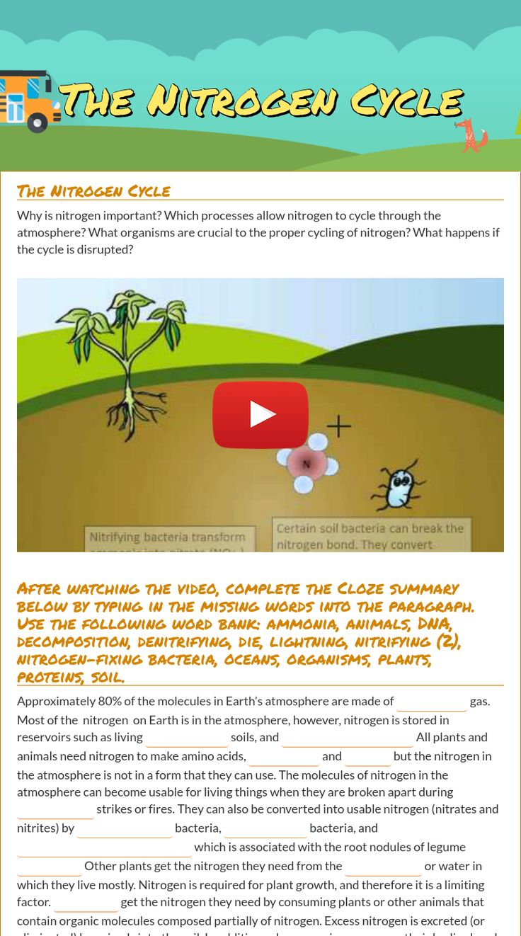 wizer.me free interactive nitrogen cycle, Biology, cycles, blended worksheet - The Nitrogen Cycle by teacher