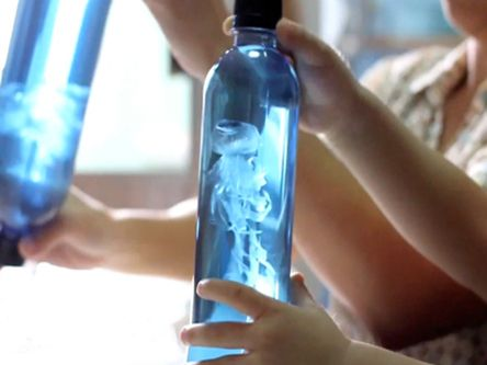 Jellyfish Craft For Kids image: Water Bottle, Idea, Plastic Bags, For Kids, Diy Jellyfish, Science Experiment, Kids Crafts, Jellyfish Crafts, Jelly Fish