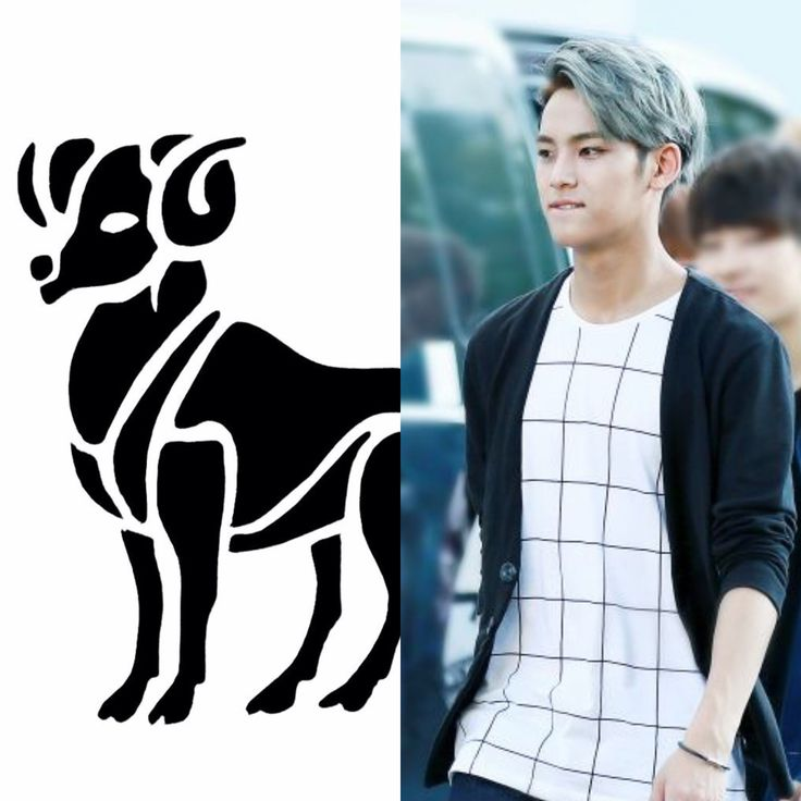 Kpop Zodiac // Aries // Mingyu of seventeen