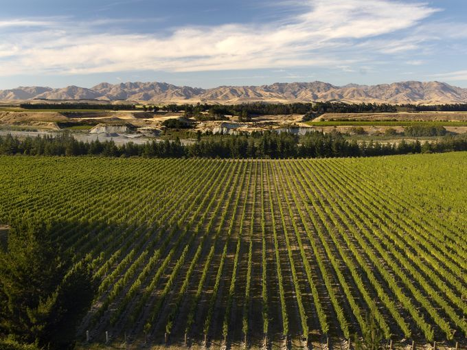 "New Zealand has several distinct wine regions, but its largest and most famous is Marlborough in the upper South Island. This region put ""Mi..."