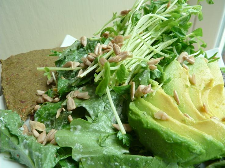 Raw Vegan Organic & Alkaline Ranch Salad  ~ ♥ ~ Mixed Greens, Avocado, Organic pea shoots, Sunflower Seeds, Himalayan Pink Salt & Hemp seed ranch Dressing served with a Raw Vegan Alkaline & Gluten free Focaccia bread-:-:-:-:-:-:-:-:-:-:-:-:-:-:-:-:-  Ensalada Ranchera Cruda Vegana Organica & Alcalina  ~ ♥ ~  Lechuga Mixta, Aguacate, Germen de Arveja, Semillas de Girasol, Sal Rosada de los Himalayas, & Salsa Ranchera a base semilla de Canamo servida con un pan de Focaccia Crudo Vegano…