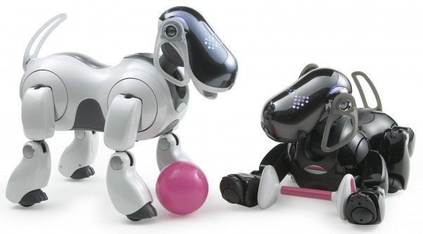 robot-chien Aïbo
